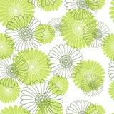 在白色背景的无缝的花纹花样 开花绿灯 库存照片