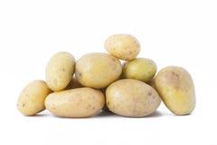 在白色背景的早期的土豆 免版税图库摄影