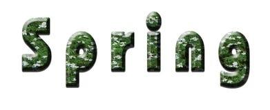 在白色背景的春天字法与从spri的信件 免版税库存照片