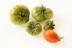 在白色背景的有机,绿色和红色蕃茄 免版税库存照片