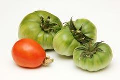 在白色背景的有机,绿色和红色蕃茄 免版税库存图片