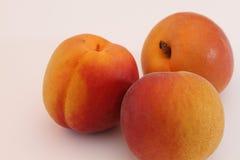 在白色背景的杏子 库存照片