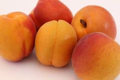 在白色背景的杏子 免版税库存照片