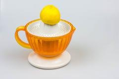 在白色背景的柑橘榨汁器 库存照片