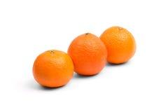 在白色背景的柑橘 免版税库存照片