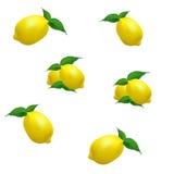 在白色背景的柠檬例证 库存照片