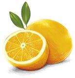 在白色背景的柠檬果子 免版税库存照片