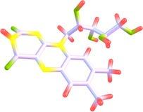 在白色背景的核黄素(B2)分子结构 免版税库存照片