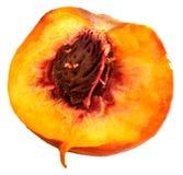 在白色背景的桃子 免版税库存照片
