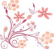 在白色背景的桃红色和紫色花传染媒介 免版税库存图片