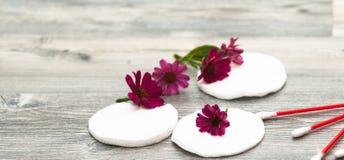 在白色背景的棉花圆盘与花 面孔和身体护肤的自然化妆用品手段  选择聚焦 库存照片