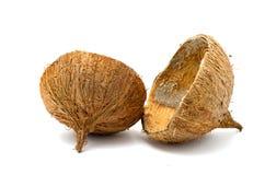 在白色背景的椰子空的壳 免版税库存照片