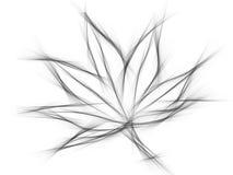 在白色背景的槭树事假由例证 库存图片