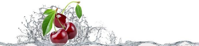 在白色背景的樱桃和水飞溅 免版税图库摄影
