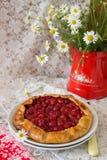在白色背景的樱桃galette 库存照片
