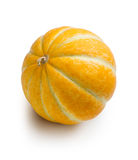 在白色背景的橙色瓜 免版税库存照片