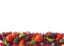 在白色背景的混合莓果 成熟红浆果,草莓,黑莓,蓝莓,与薄荷叶的黑醋栗在w 免版税库存照片