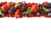 在白色背景的混合莓果 成熟红浆果,草莓,黑莓,蓝莓,与薄荷叶的黑醋栗在w 库存图片