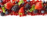 在白色背景的混合莓果 成熟红浆果,草莓,黑莓,蓝莓,与薄荷叶的黑醋栗 库存图片