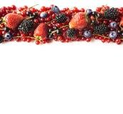 在白色背景的混合莓果 成熟红浆果,草莓,黑莓,蓝莓,在白色背景的黑醋栗 图库摄影