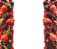 在白色背景的混合莓果 成熟红浆果,草莓,黑莓,蓝莓,在白色背景的黑醋栗 免版税图库摄影
