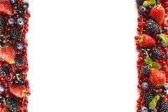 在白色背景的混合莓果 成熟红浆果,草莓,黑莓,蓝莓,在白色背景的黑醋栗 库存图片