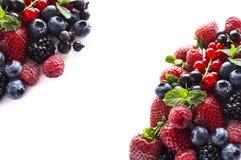 在白色背景的混合莓果 成熟红浆果,草莓,黑莓,蓝莓,黑醋栗,与分钟的莓 库存图片