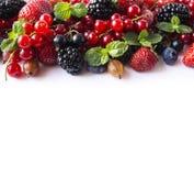 在白色背景的混合莓果 成熟红浆果,草莓,黑莓,蓝莓,黑醋栗,与mi的鹅莓 图库摄影