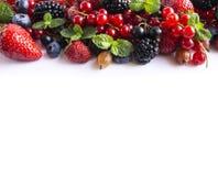 在白色背景的混合莓果 成熟红浆果,草莓,黑莓,蓝莓,黑醋栗,与mi的鹅莓 免版税库存图片