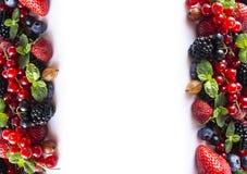 在白色背景的混合莓果 成熟红浆果,草莓,黑莓,蓝莓,黑醋栗,与mi的鹅莓 免版税库存照片