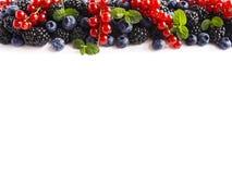 在白色背景的混合莓果 成熟红浆果,黑莓,蓝莓,与在白色背景的薄荷叶 顶视图 图库摄影