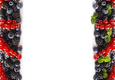 在白色背景的混合莓果 成熟红浆果,黑莓,蓝莓,与在白色背景的薄荷叶 顶视图 f 图库摄影