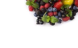 在白色背景的混合莓果 莓果和果子在图象边界与拷贝空间文本的 黑蓝色和红色食物 成熟b 免版税库存照片