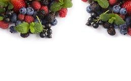 在白色背景的混合莓果 莓果和果子在图象边界与拷贝空间文本的 黑蓝色和红色食物 成熟b 库存图片