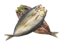 在白色背景的烟熏鲱鱼 免版税库存照片