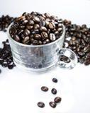 在白色背景的烤咖啡咖啡杯 库存图片