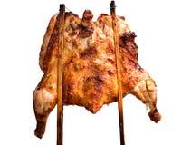在白色背景的烤鸡孤立 图库摄影
