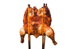 在白色背景的烤鸡孤立 库存图片