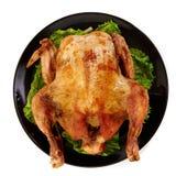 在白色背景的烤鸡 免版税库存图片