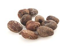 在白色背景的牛油树坚果, karite种子 免版税库存照片