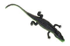 在白色背景的玩具鳄鱼 免版税图库摄影