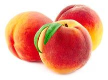 在白色背景的甜桃子 图库摄影