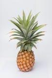 在白色背景的甜的菠萝和叶子 图库摄影