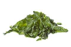 盐味的海莴苣 免版税库存照片