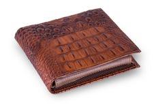 在白色背景的精神棕色钱包鳄鱼 免版税库存图片