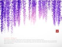 在白色背景的紫藤开花 传统东方墨水绘画sumi-e, u罪孽,去华 桃红色紫藤开花 库存例证