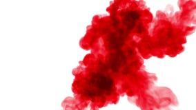 在白色背景的红色墨水在水中溶化 美好的作用在计算机上塑造了 3d回报与luma铜铍为 影视素材