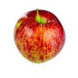 在白色背景的红色富士苹果计算机 免版税库存图片