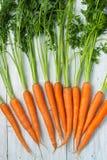 在白色背景的红萝卜 免版税图库摄影