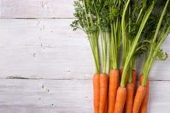 在白色背景的红萝卜 库存图片
